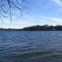 lakewashington