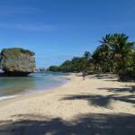 Barbados Water Temperature