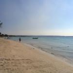 Jamaica Water Temperature