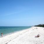 Water Temperature Naples FL