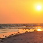 Sarasota Water Temperature